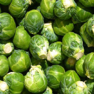 Brussels Sprout Early Half Tall - Appx 750 seeds